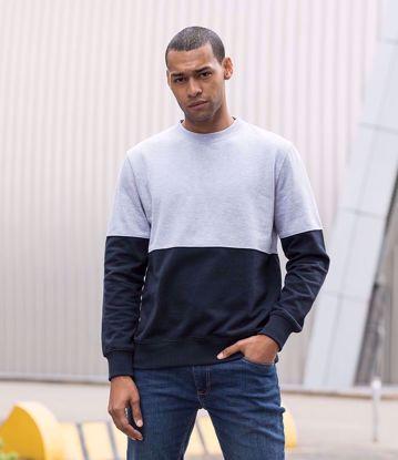Picture of Colour Block Sweatshirt