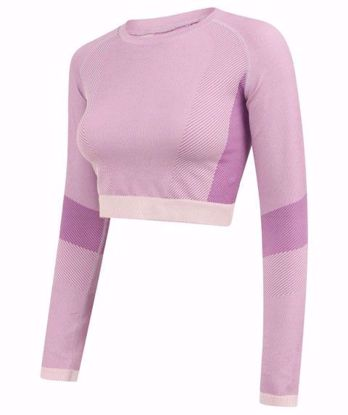 Picture of Seamless Panelled Longsleeve